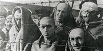 Survivants - Auschwitz