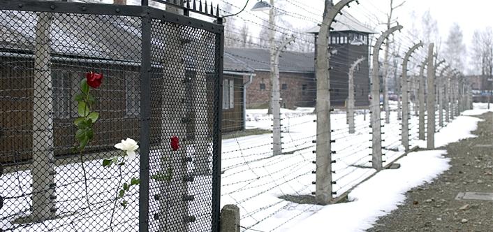 Journée internationale pour la mémoire des victimes de l'Holocauste